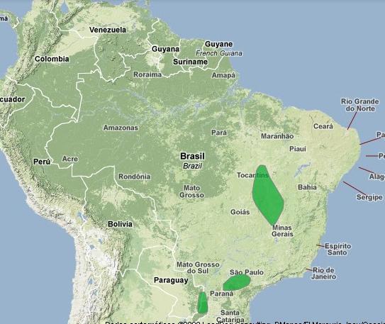 Confira áreas propícias ao pato-mergulhão na América do Sul.
